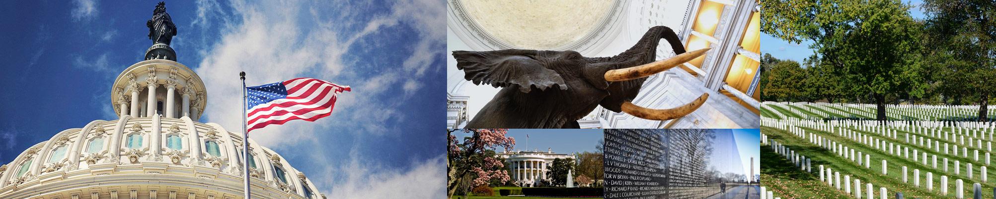 Elite servizio di incontri Washington DCfamoso collegamento app