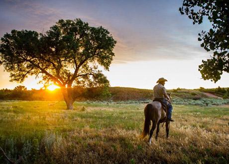 Grandi pianure xplore america for Grandi piani del ranch