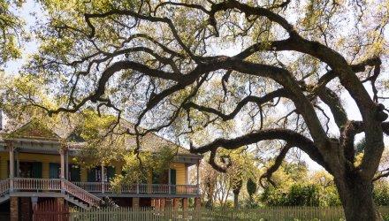 tour del texas e del profondo sud in auto xplore america. Black Bedroom Furniture Sets. Home Design Ideas
